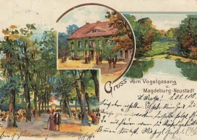 AK_Magdeburg-Neustadt-Gruss-vom-Vogelgesang